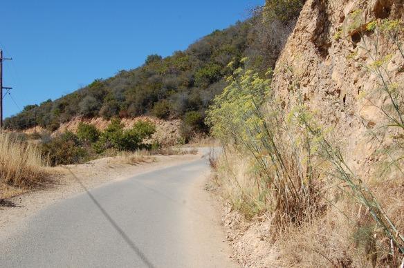 Sullivan Trail